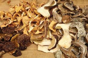 Як сушити гриби  b26af1a346a25